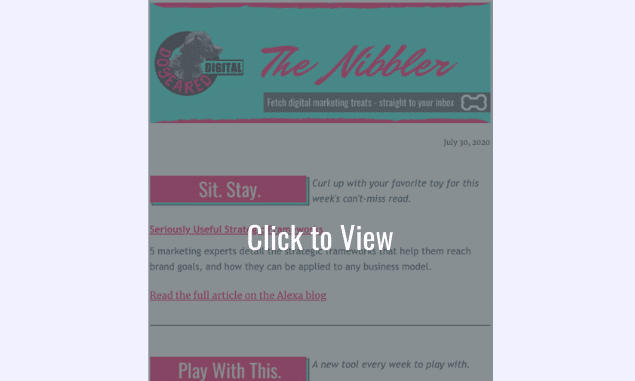The Nibbler digital marketing newsletter